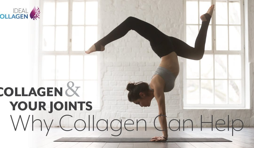 How Hydrolyzed Collagen Can Help the Joints